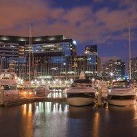 Мельбурн :: Wattletree -
