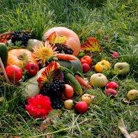 Щедрая осень в саду. :: Надежда