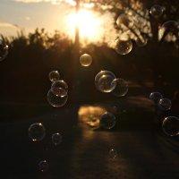 мыльные пузыри :: Олеся Машанова
