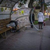 Утро на остановке. :: Валерий Молоток