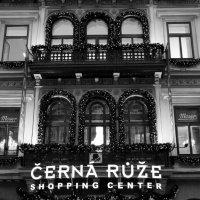 Прага :: Евгения Горячева