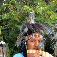 Ярик Эквадор :: Светлана Павлова