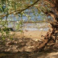 пляж :: Инна Сечко