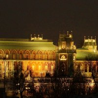 ночное царицыно :: Александр Шурпаков