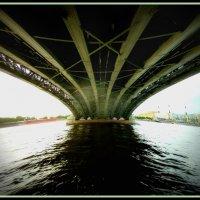 Троицкий мост (Санкт-Петербург) :: Наталья Белякова