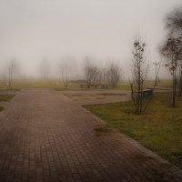 Осенний туман :: Елена Черненко