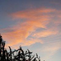 Отражение заката. :: сергей