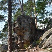 Добродушный камень . :: Яковлев Виктор