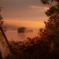 в тумане :: Константин Нестеров