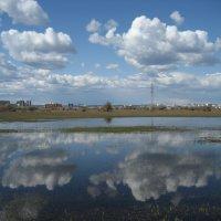 После паводка :: Anna Ivanova