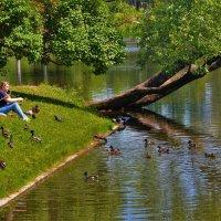 Повелительница птиц... :: Sergey Gordoff