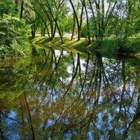 Глубокие отражения лета... :: Sergey Gordoff