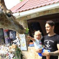 В зоопарке. :: Геннадий Валеев