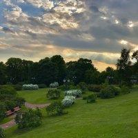 Вечерний пейзаж ... :: Лариса Корж