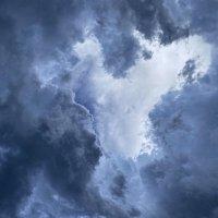 Перед дождём :: Светлана Карнаух