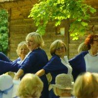 В ритме танца :: Александр Козлов
