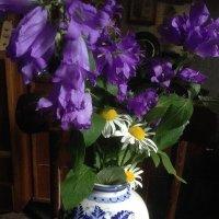 Букет полевых цветов :: Татьяна Юрасова