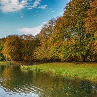 На озере :: Alexander Andronik