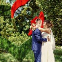 wedding :: Татьяна Захарова