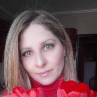 Красные тюльпаны :: Андрей Хлопонин