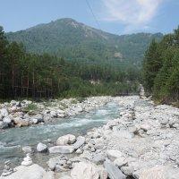 А по камушкам река бежит :: Лариса Рогова