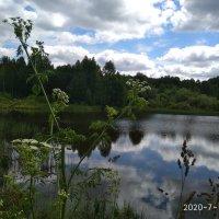 На озере в полдень :: Алена