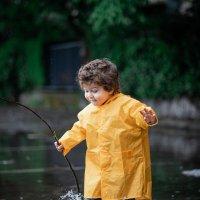 дождик :: Наталья Борисова