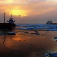 Морские истории. :: игорь кио