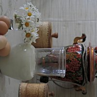 Завтрак с запахом ромашки. :: Николай Масляев