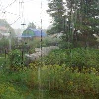 ...Местами ливневые дожди... :: Галина Кан