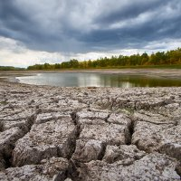 Засушливая земля. Трещины на земле. :: Zefir58 Verx