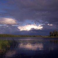 Не долго быть тёмной полосе :: liudmila drake
