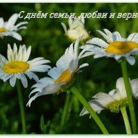 С праздником! :: Татьяна Лютаева