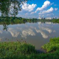 На берегу... :: Владимир Жданов