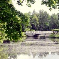 Мостики Ламских прудов Ал. парка ЦС - 2 :: Сергей