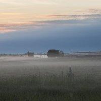 В предрассветном тумане 3 :: Galina
