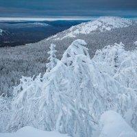 Морозное утро в Уральских горах. :: Pavel Vasilev