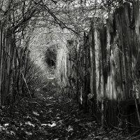 Тунель :: Михаил Сиваев