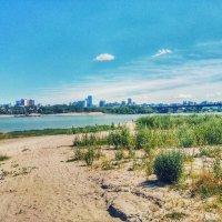 Лето у реки :: Света Кондрашова