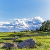 Берег озера Ильмень :: Арина