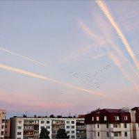 Утренние полёты из моего окна :: Кай-8 (Ярослав) Забелин