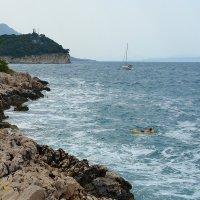 Одинокий пловец :: Дмитрий Svensson