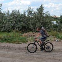 Велорыбак....Спешит. :: Андрей Хлопонин