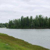 на рыбалке :: nataly-teplyakov