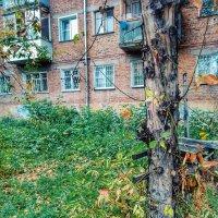 Пахнет осенью :: Света Кондрашова