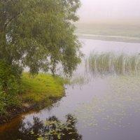 вот такое туманное утро случилось в один из июльских дней... :: Геннадий Титоренко
