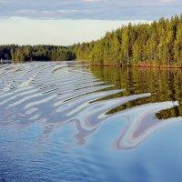 Испуг водной глади :: Владимир Соколов
