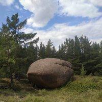 Каменный шарик :: Георгиевич