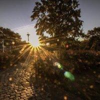 Солнечный взрыв :: Alexander Andronik