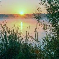 Тихое утро с осенним мотивом :: Валерий Иванович